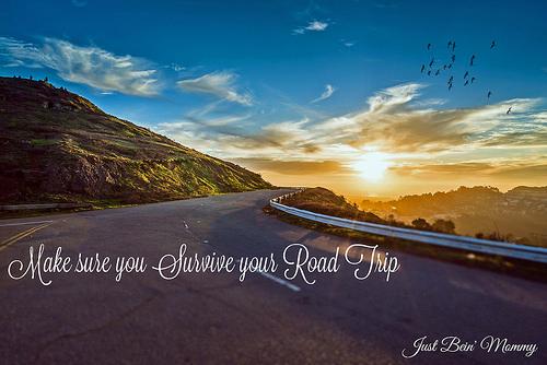 Make sure you survive your road trip