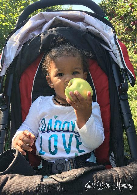 Explore the Happy Family Infant feeding platform