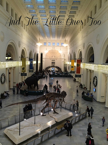 Learning from the past at The Field Museum #ChicagoWorldsFair