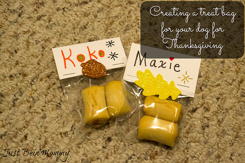 DIY: Make a treat bag for your pup this Thanksgiving #TreatThePups