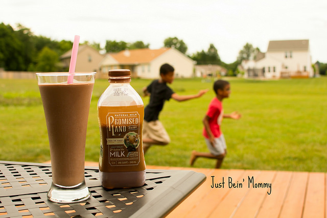 MilkShake Up Your Summer with Promised Land Milk!