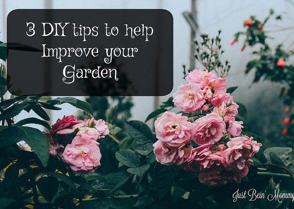 3 DIY tips to help improve your garden