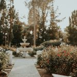 How To Create An Eco-Friendly Garden